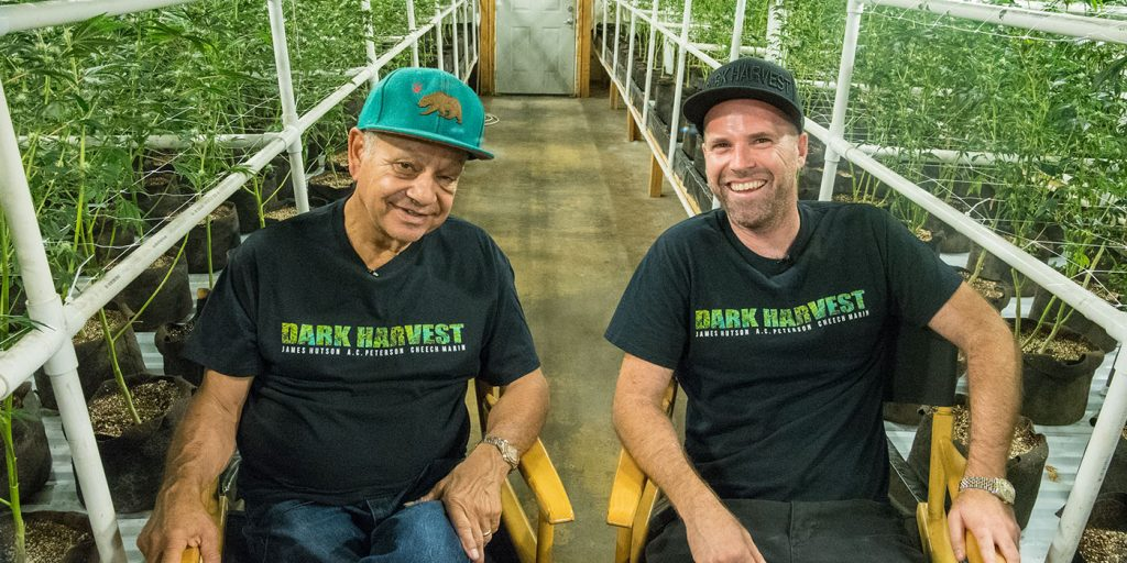 Cheech Marin, James Hutson, Dark Harvest, Cheech and Chong, Cheech's Choice