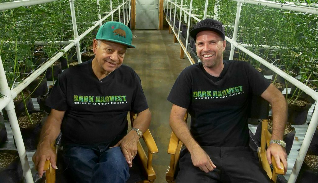 James Hutson, Cheech Marin, Dark Harvest, Cannabis