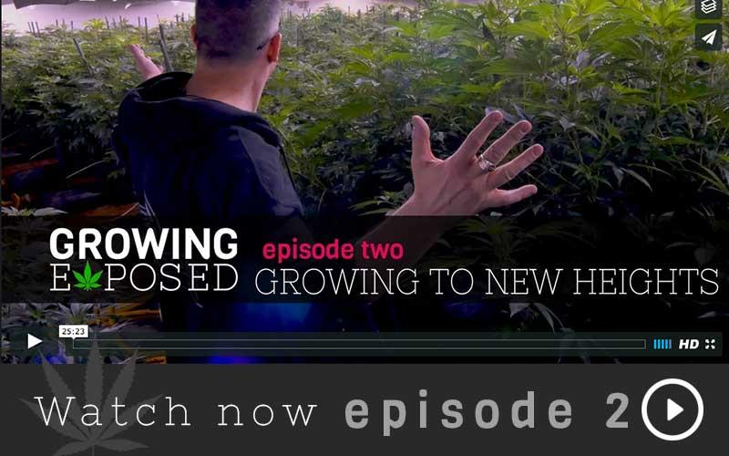 Episode2_HomeThumbnail