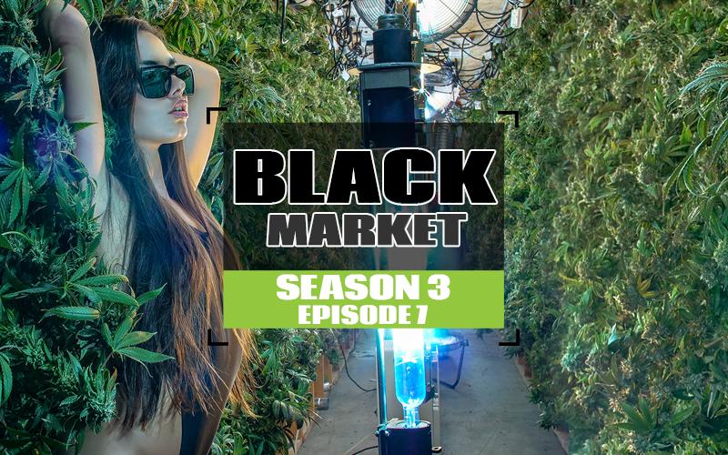 S3 EP7 Black Market copy